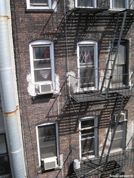 backyard windows-3932